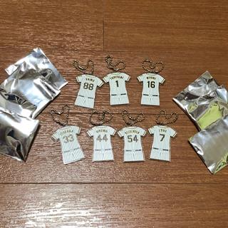 ハンシンタイガース(阪神タイガース)のコンプリート 呑んでもらおう! 阪神甲子園球場 乾杯キャンペーン 2019(記念品/関連グッズ)