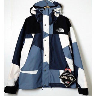THE NORTH FACE - 希少 ノースフェイス 1990 MOUNTAIN JACKET GTX