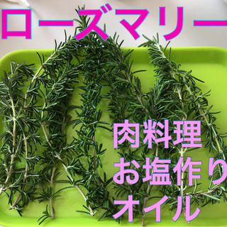 ローズマリー❤️梱包含め75g300円❤️カットします❤️(その他)