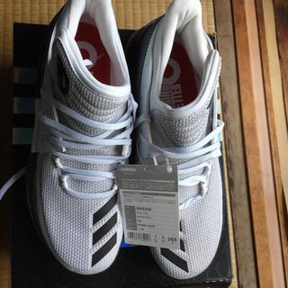adidas - アディダス新品 バスケットシューズ