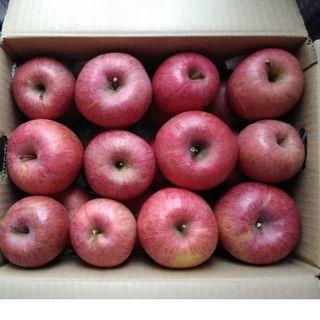 【最終】りんご サンふじ 6.5キロ