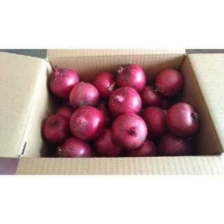 北海道産 減農薬 赤玉ねぎ 5キロ
