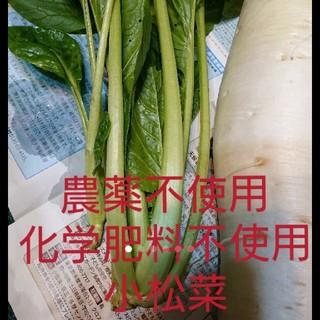 無農薬小松菜  250g(野菜)