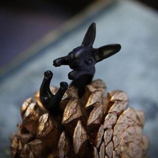 特価高品質!メルヘンなウサギのブラックリング ゴシック、V系、スチームパンク(リング(指輪))