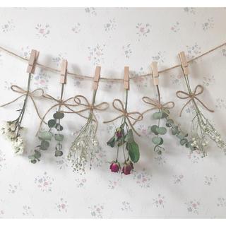 バラとかすみ草とユーカリのクリスマスドライフラワーガーランド♡(ドライフラワー)