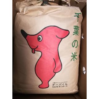 千葉県産コシヒカリ25キロ 白米