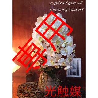 光触媒 人工観葉植物 5F胡蝶蘭8039