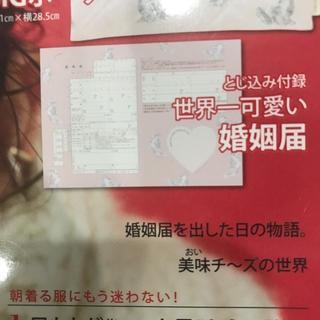 ジェラートピケ(gelato pique)のMORE付録 婚姻届 (印刷物)