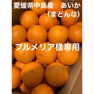 愛媛県中島産 あいか(紅まどんな)