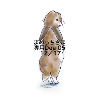★12/17★まめっちさま専用ページ(その他)