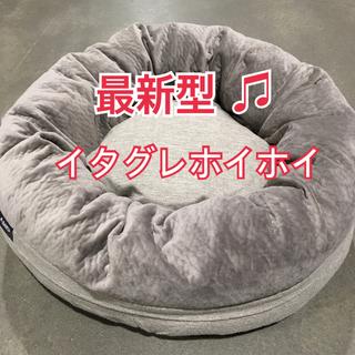 コストコ - ☆新品・未使用☆コストコ イタグレホイホイ イタホイ 最新モデル 最安値