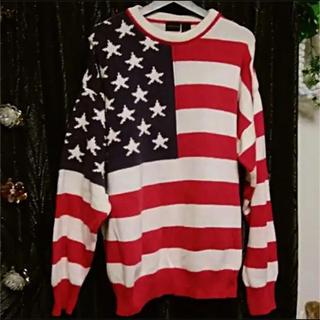 ロンハーマン(Ron Herman)のU.S.A製ロンハーマンSTRUCTURE星条旗カラーロンゲージニットセーターM(ニット/セーター)