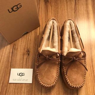 UGG - 新品!UGG アグ ダコタ チェスナットUS8