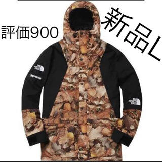 Supreme - Supreme The North Face Mountain Jacket