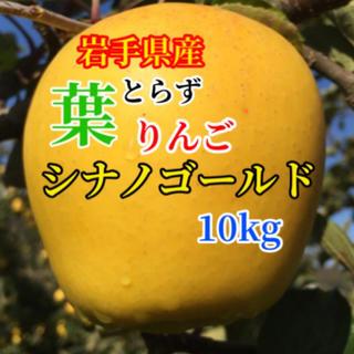 【送料込】葉とらずりんご シナノゴールド 30〜36個 約10kg (フルーツ)