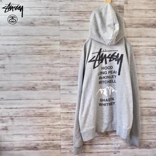 STUSSY - Stussy World Tour Mounatin Hoodie