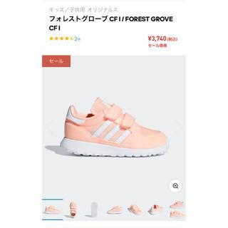adidas - フォレストグローブ adidas