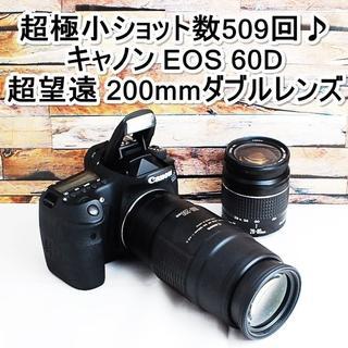 Canon - ★自撮り&ショット数509回★キャノン EOS 60D ダブルレンズセット