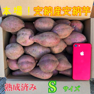 hanna様専用ページ S  本場熟成済み安納芋 5.5㎏ A級品(野菜)