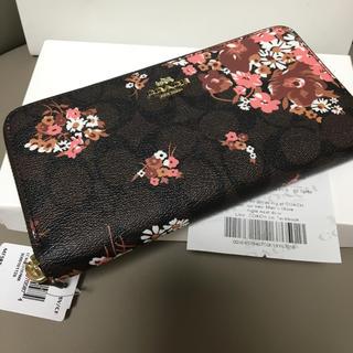 COACH - 即日発送 coach長財布31572 正規品 新品