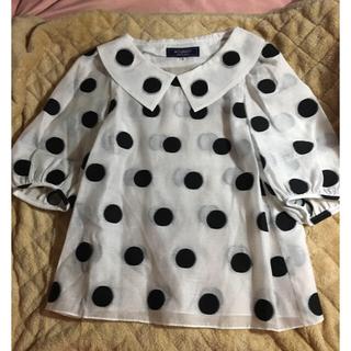 エムズグレイシー(M'S GRACY)のエムズグレイシー 水玉 夏服(Tシャツ(半袖/袖なし))
