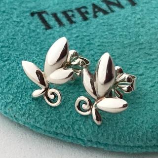 Tiffany & Co. - TIFFANYオリーブリーフピアス