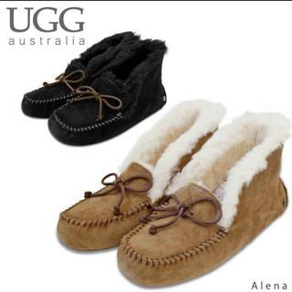 UGG - 新品 UGG アレーナ US7 24センチ ブラック