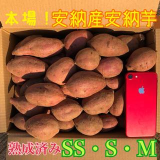 本場!熟成済み安納芋 SS.S.M  5.5㎏ A級品(野菜)