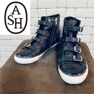 ASH - ASH アッシュ レザーハイカットスニーカー