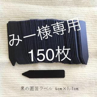 園芸ラベル150枚 黒 ブラック 黒ラベル ガーデニング サボテン(その他)