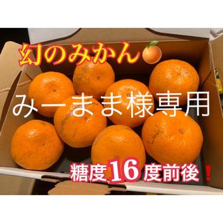 みーまま様専用 幻の河内みかん 10kg  (フルーツ)