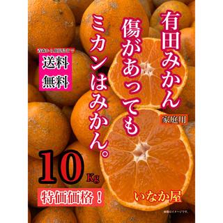 有田みかん 家庭用 傷多目 セール ミカン(フルーツ)