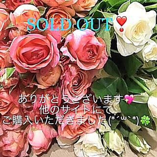 LIZ LISA - LIZ LISA❤︎可愛いトップス(*˘︶˘*).。.:*♡