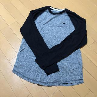 ホリスター(Hollister)のホリスター ラグラン ロンT(Tシャツ/カットソー(七分/長袖))