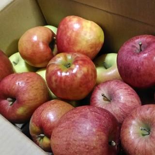 りんご DX 詰め合わせ 箱込み7.5kg(フルーツ)