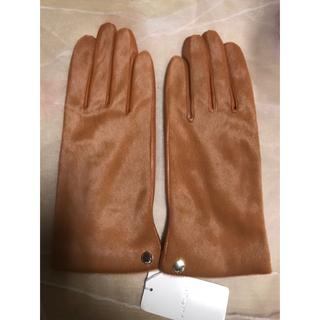 JILLSTUART - 【レアカラー】正規品 ジルスチュアート JILLSTUART 手袋