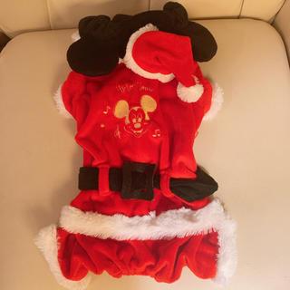 Disney - ペットパラダイス☆DS ミッキーサンタ ダックスフント