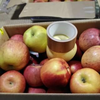 りんご詰め合わせ 規格外 箱込4kg(フルーツ)