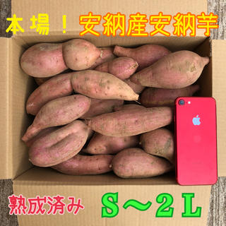 本場!熟成済み安納芋 S〜LL  5.5㎏(野菜)