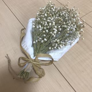 ドライフラワー花束/かすみ草/ウェディング/ウェルカムスペース(ドライフラワー)