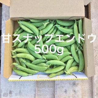 鹿児島産甘スナップエンドウ箱込み500g^_^(野菜)