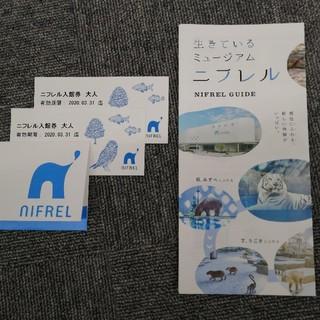ニフレル 入館券 大人 チケット 2枚 セット(水族館)