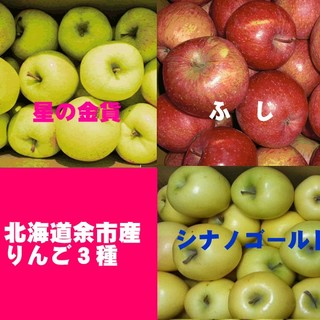 北海道産余市町りんご3種【ふじ】【星の金貨】【シナノゴールド】訳あり品5キロ(フルーツ)