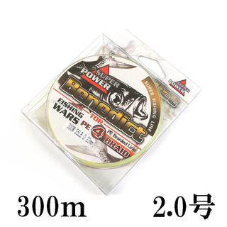 PEライン 5色 マルチカラー 4編 300m 2号 (釣り糸/ライン)