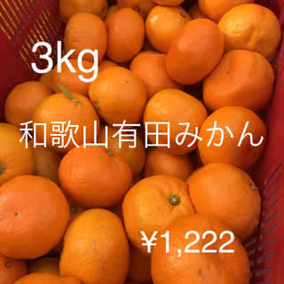 和歌山有田みかん 3キロ サイズ混合 訳あり(フルーツ)