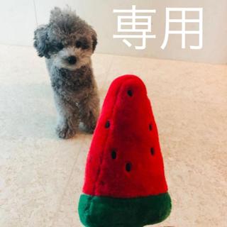 パル様専用(K-POP/アジア)