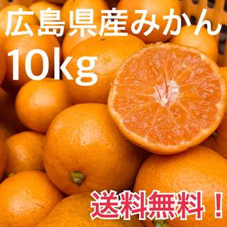 大崎上島産 みかん 10kg 広島 瀬戸内 普通温州(フルーツ)