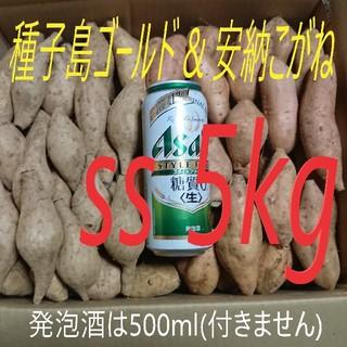 種子島ゴールド & 安納こがね SSサイズ 5キロ(野菜)