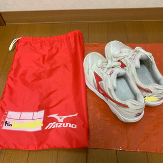 ミズノ(MIZUNO)の室内用運動靴 体育館シューズ ミズノ(その他)