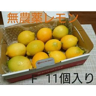無農薬 国産 レモン ノーワックス ホットレモン はちみつレモン など  F(フルーツ)